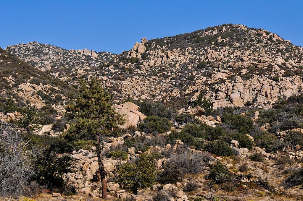 . View of the Pinnacle Peaks as efforts to find a missing German hiker continue in the San Bernardino Mountains near Lake Arrowhead on Friday, Oct. 4, 2013. Alyof Krost, 62, went missing Tuesday afternoon after hiking with a group of 20 people on the Pinnacle Trail near Lake Arrowhead. (Photo by Rachel Luna / San Bernardino Sun)