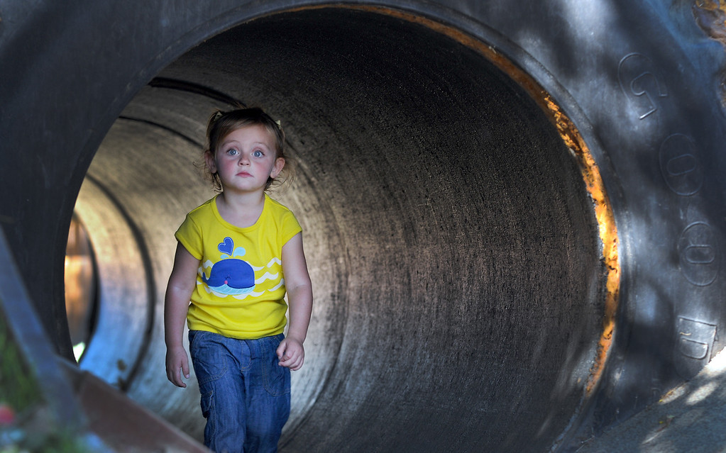 . A young girl plays in the tractor tire tunnell.  Underwood Family Farms in Moorpark, CA hosted its Friends of the Farm weekend, launching its Fall Harvest Festival, which runs through Halloween.  The Saturday, September 28, 2013, event benefits the Ventura County Sheriff\'s & Fire Departments.  (Photo by Dean Musgrove/Los Angeles Daily News)