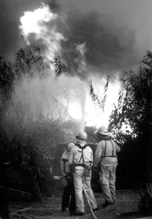 . These firefighters are among 600 who made a stand at Topanga Canyon Boulevard and Pacific Coast Highway on November 3, 1993.   Los Angeles Daily News file photo