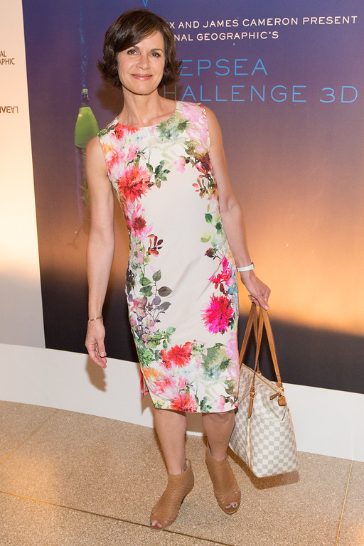 ". Elizabeth Vargas attends the U.S. premiere of National Geographic\'s ""Deepsea Challenge 3D\"", hosted by James Cameron and Rolex, at the American Museum of Natural History on Monday, Aug. 4, 2014 in New York. (Photo by Scott Roth/Invision/AP)"
