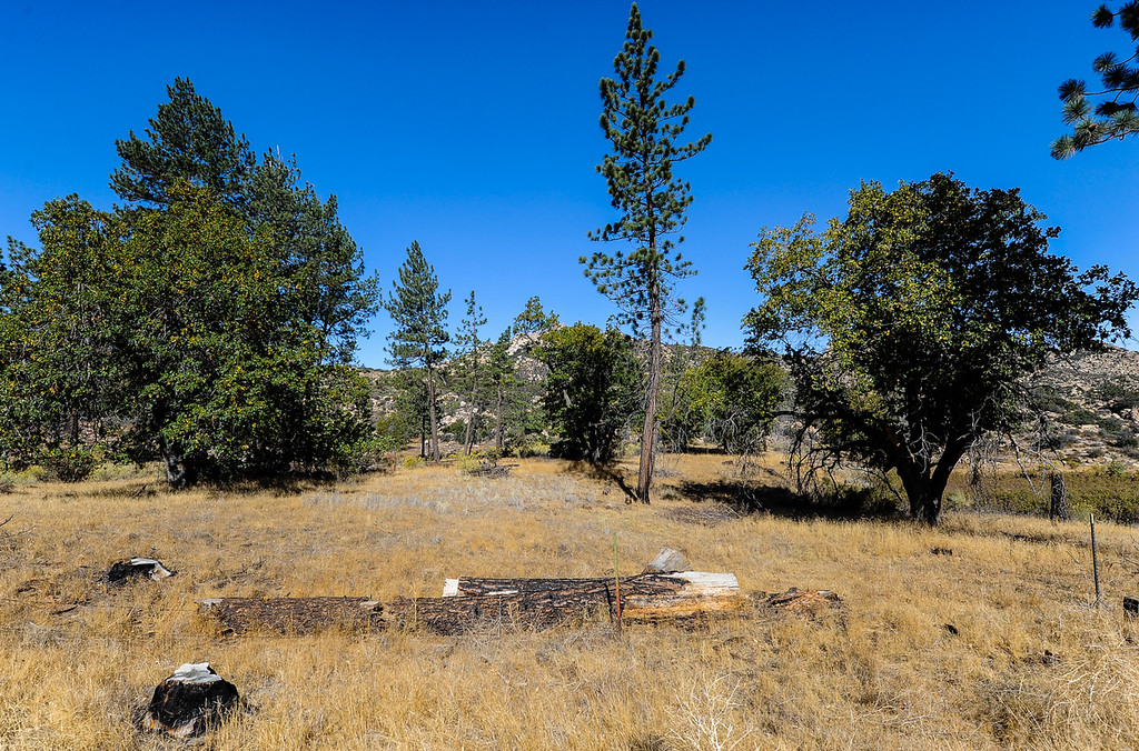 . View of the Pinnacle Trail area as efforts to find a missing German hiker continue in the San Bernardino Mountains near Lake Arrowhead on Friday, Oct. 4, 2013. Alyof Krost, 62, went missing Tuesday afternoon after hiking with a group of 20 people on the Pinnacle Trail near Lake Arrowhead. (Photo by Rachel Luna / San Bernardino Sun)