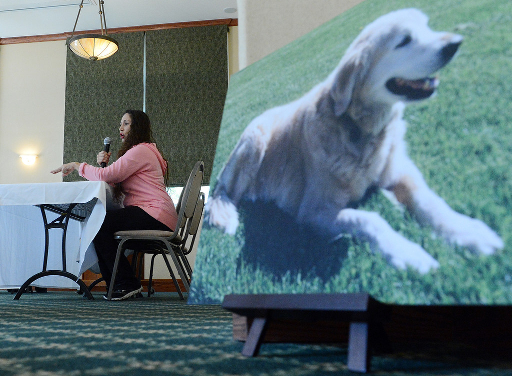 . Alicia Fagundes, owner of a 3-year old pit bull which attacked and killed a neighbor\'s 15-year-old golden retriever (pictured to the right) in Upland this past August, speaks during an October hearing concerning the fate of her dog. (Staff photo/Inland Valley Daily Bulletin)