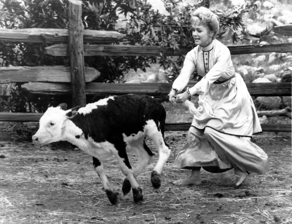 ". Hanging onto its tail, Debbie Reynolds tries to keep a young calf from pulling her into the mud in a scene for ""The Second Time Around,\"" June 19, 1961. Debbie has a new kind of star role for her as a widow from the east who becomes a frontier town sheriff. (AP Photo)"