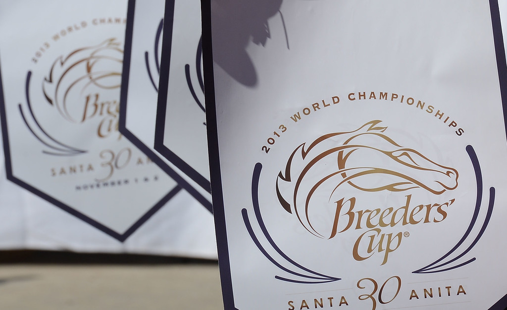 . The fourth race during the Breeders\' Cup at Santa Anita Park in Arcadia, Calif., on Saturday, Nov. 2, 2013.    (Keith Birmingham Pasadena Star-News)