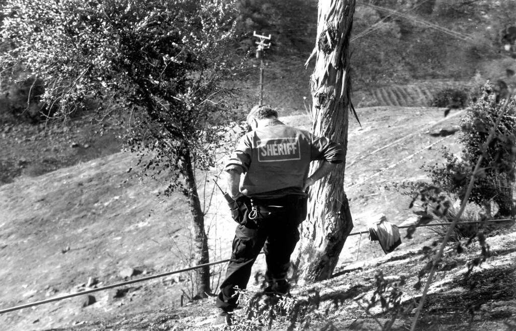 . A sheriff\'s investigator looks at a spot where Tuesday\'s fire is suspected to have started in Calabasas. (11/3/1993)   Los Angeles Daily News file photo