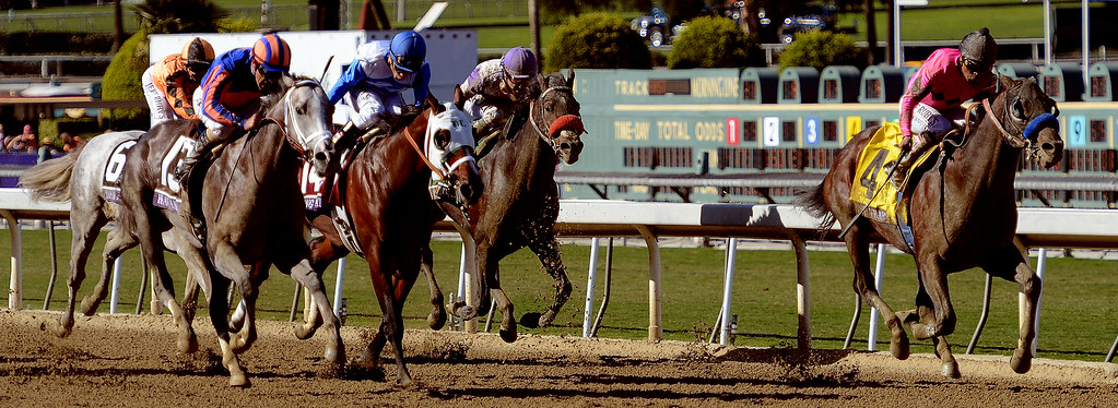 ". Jockey Martin Garcia atop ""New Year\'s Day\"" (4) wins the Breeders\' Cup Juvenile eighth race during the Breeders\' Cup at Santa Anita Park in Arcadia, Calif., on Saturday, Nov. 2, 2013.    (Keith Birmingham Pasadena Star-News)"