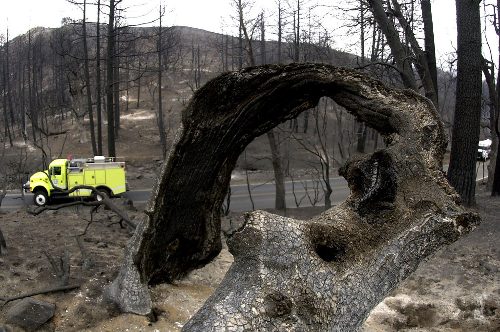 . A fire truck drives through a charred region of the Cuyamaca Rancho State Park Friday, Nov. 31, 2003 near Cuyamaca, Calif. The Cedar fire east of San Diego has consumed more than 272,000 acres since Saturday. (AP Photo/Charlie Riedel)