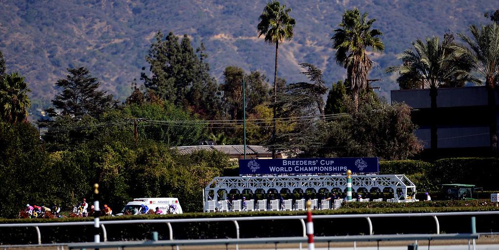 ". The start of the sixth race during the Breeders\' Cup at Santa Anita Park in Arcadia, Calif., on Saturday, Nov. 2, 2013. Jockey Julien Leparoux atop \""Sweet Lulu\"" won the race.   (Keith Birmingham Pasadena Star-News)"