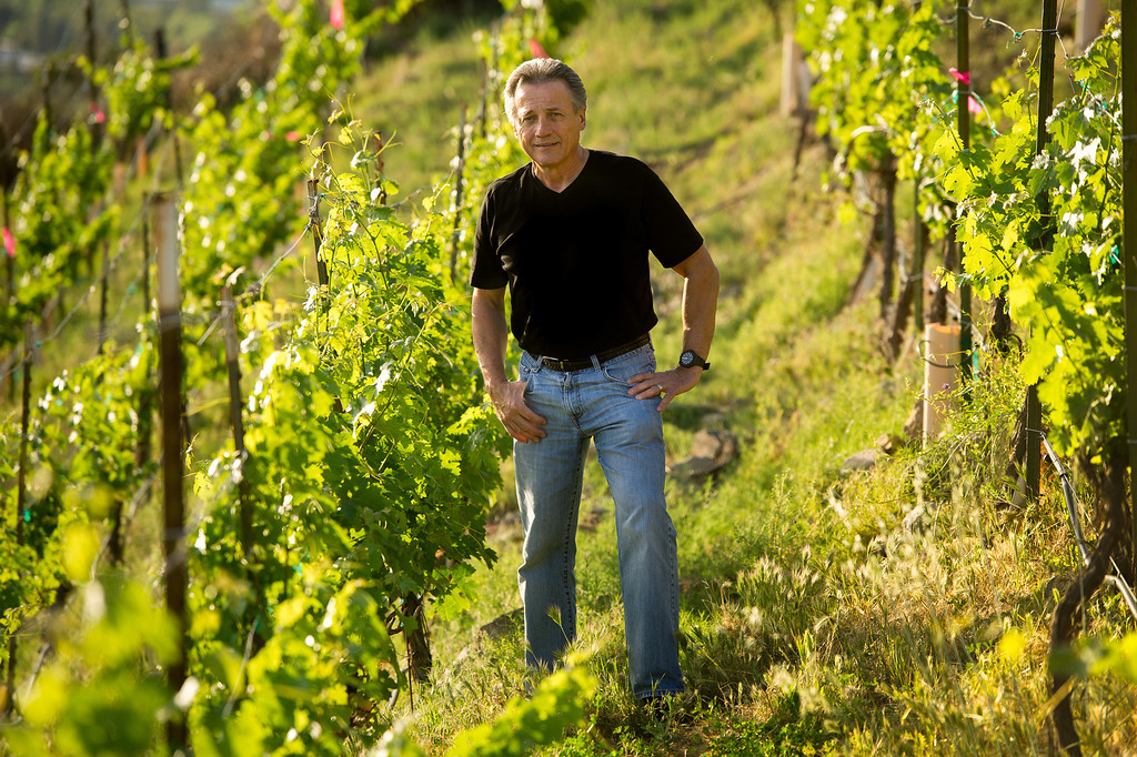 . Chet Schreiber in the vineyard at his Westlake home, Thursday, April 24, 2014. (Photo by Michael Owen Baker/L.A. Daily News)