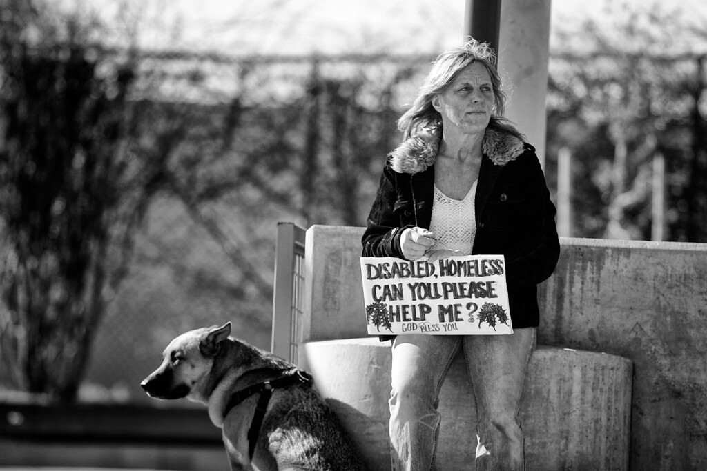 """. Gunner stands guard as Dorothy Edwards \""""flies a sign,\"""" commonly known as panhandling, at the parking lot entrance to Target in east Pasadena, not far from her camp. (Photos by Sarah Reingewirtz / Pasadena Star-News)"""
