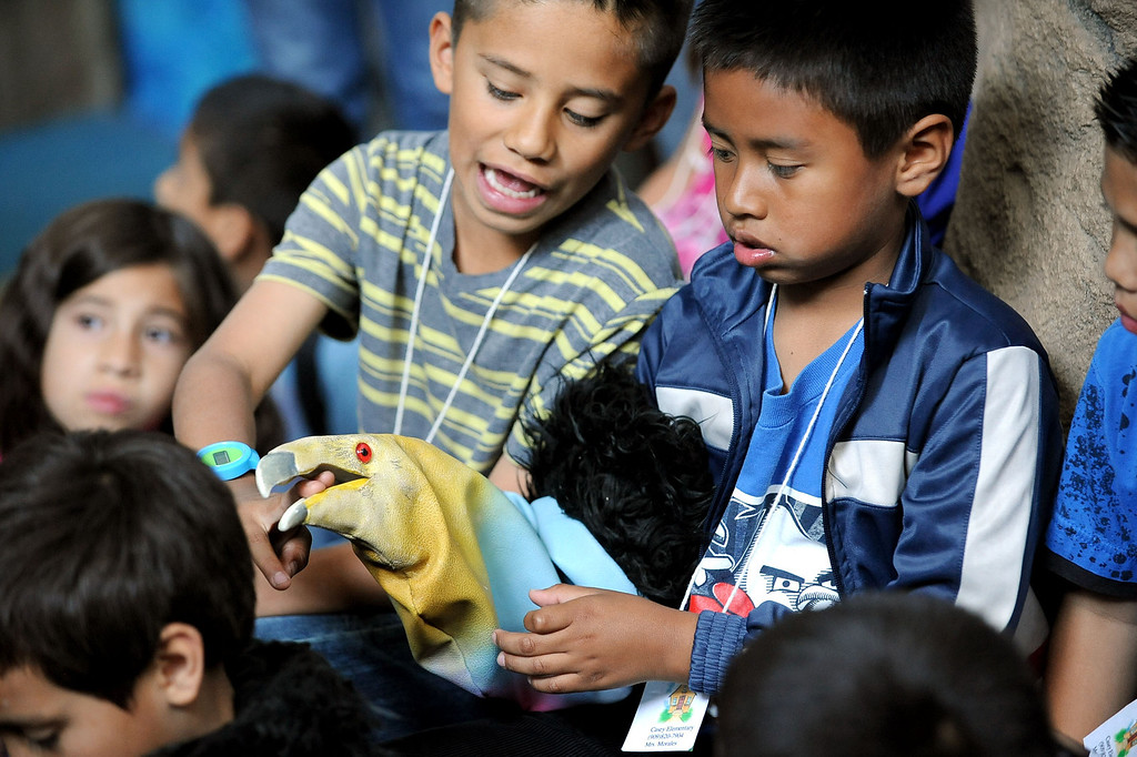 . Youngsters play with a condor puppet while exploring the California Condor Rescue Zone at the Los Angeles Zoo May 9, 2013.(Andy Holzman/Staff Photographer)