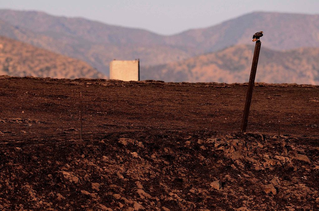 . A view of the fire damaged landscape along Gillman Road in Banning May 2, 2013.   GABRIEL LUIS ACOSTA/STAFF PHOTOGRAPHER.