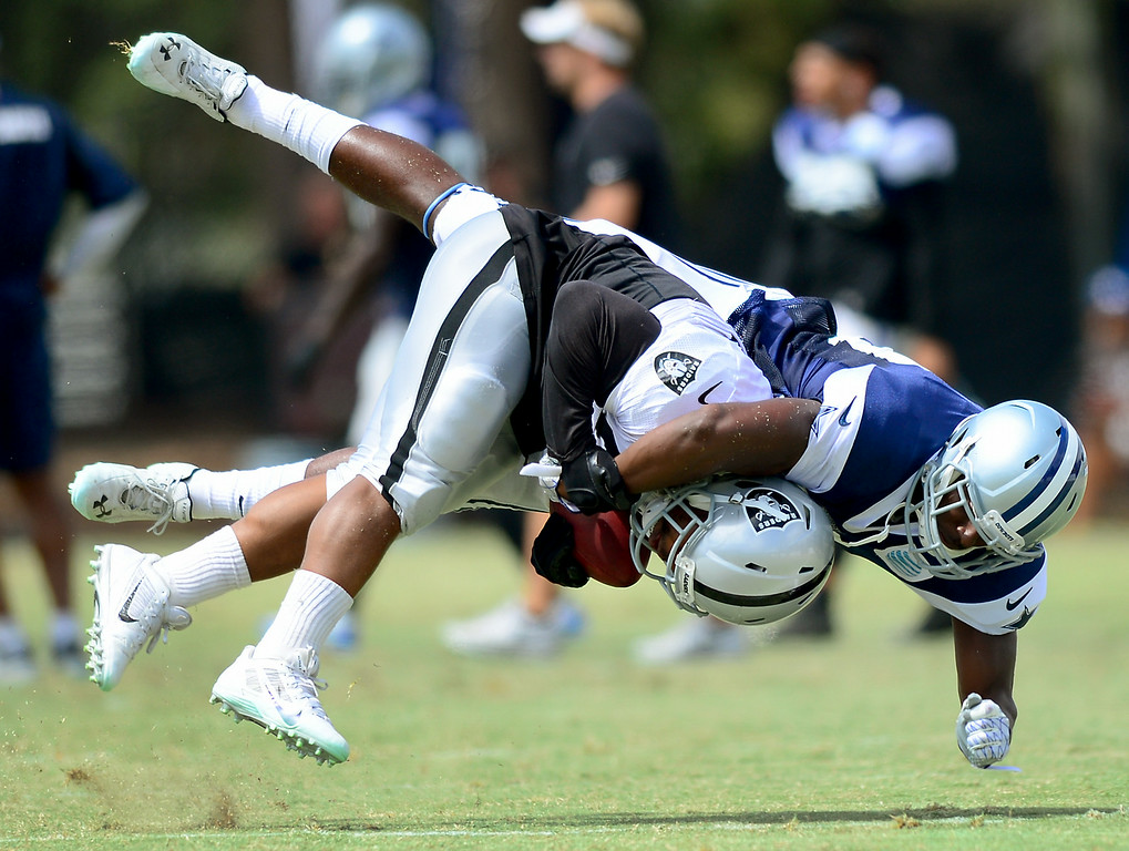 . Raider RB Maurice Jones-Drew is tackled at the Cowboys-Raiders practice in Oxnard, Wednesday, August 13, 2014. (Photo by Michael Owen Baker/Los Angeles Daily News)