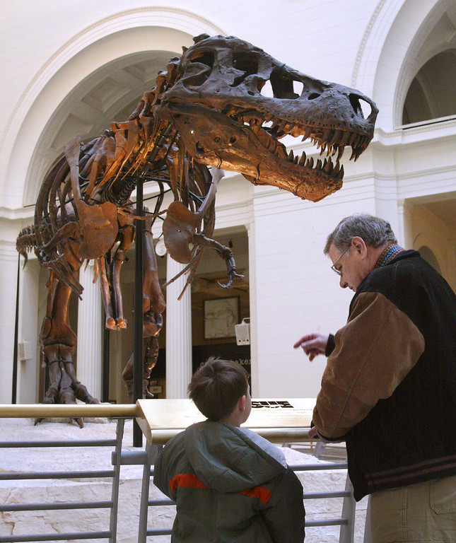 ". 402200 09: Two visitors stop to look at Sue- the largest, most complete, and best preserved Tyrannosaurus Rex fossil yet discovered - outside the ""Tiniest Giants: Discovering Dinosaur Eggs\"" exhibit March 12, 2002 at Chicagos Field Museum. The exhibit comes from the 1997 discovery in southern Argentina of the largest nesting site of dinosaur eggs ever found. More than a mile square, the site held tens of thousands of eggs, some containing fossilized embryos so well preserved the scientists could see patterns of reptilian scales in their skin. \""Tiniest Giants: Discovering Dinosaur Eggs\"" was developed by the Natural History Museum of Los Angeles County and the Carmen Funes Museum of Argentina. The exhibit is open at the Field Museum through September 2, 2002. (Photo by Tim Boyle/Getty Images)"