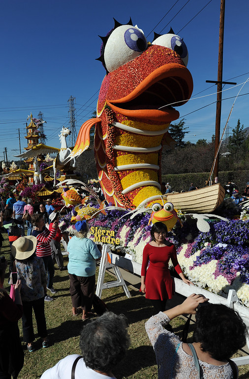 . The Sierra Madre float received a lot of attention. The 125th Rose Parade\'s Showcase of Floats was staged on Sierra Madre Boulevard between Washington Boulevard and Sierra Madre Villa Avenue, and Washington Boulevard between Sierra Madre Boulevard and Woodlyn Road.  Pasadena, CA January 1, 2014.(John McCoy/Los Angeles Daily News)