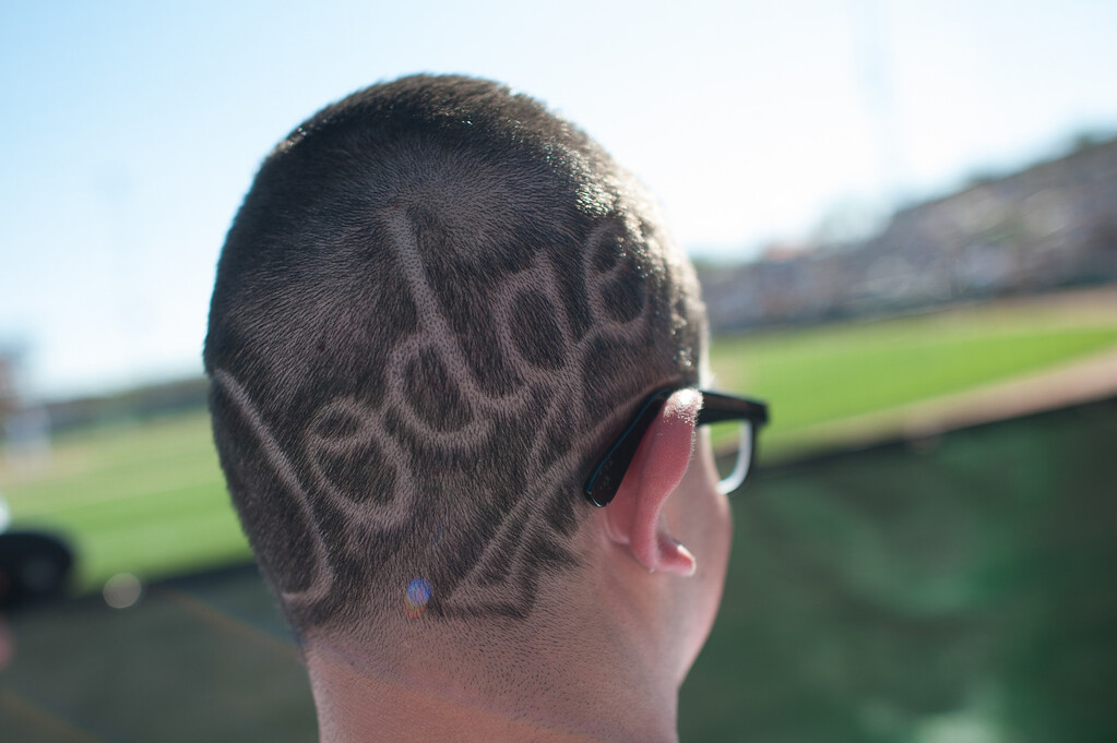 . GLENDALE, AZ - FEBRUARY 23: A general view of a Dodger fan with an etched Dodger logo on the back of his head watching the game between the Los Angeles Dodgers and the Chicago White Sox at Camelback Ranch on February 23, 2013 in Glendale, Arizona. (Photo by Rob Tringali/Getty Images)