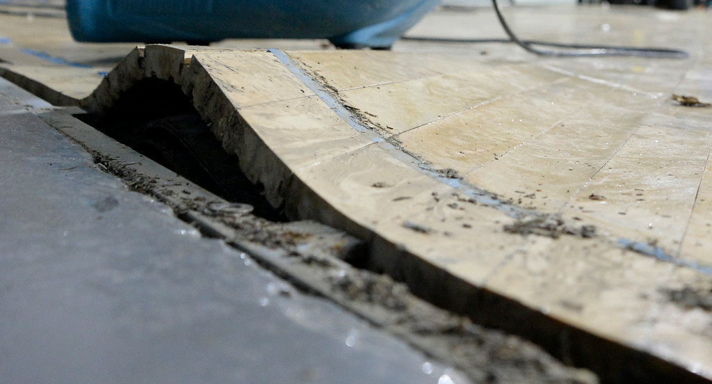 . Aug 3,2014, 2014, Westwood. Some of the gym floor buckling up from the water damage, as the hole gym floor will be replace, as repairs continue from the flooding damage to UCLA. Photo by Gene Blevins/LA DailyNews