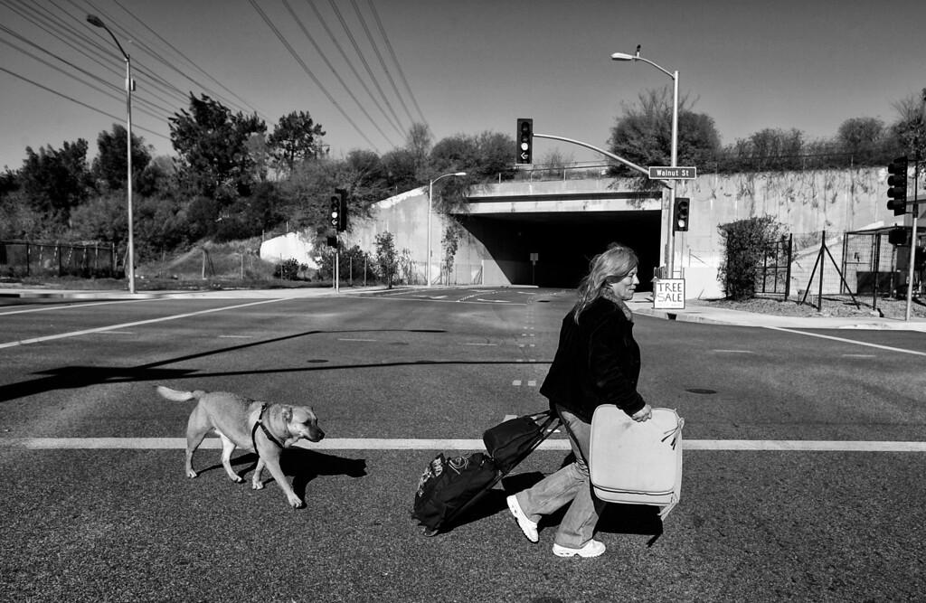 . Dorothy and Gunner head to Target along Walnut Street.