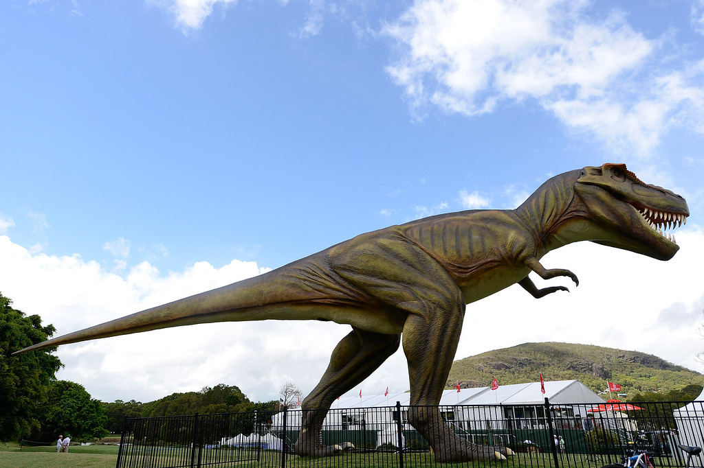 . SUNSHINE COAST, AUSTRALIA - DECEMBER 13: A large model T-Rex dinosaur named Jeff is seen during round one of the Australian PGA at the Palmer Coolum Resort on December 13, 2012 in Sunshine Coast, Australia.  (Photo by Bradley Kanaris/Getty Images)