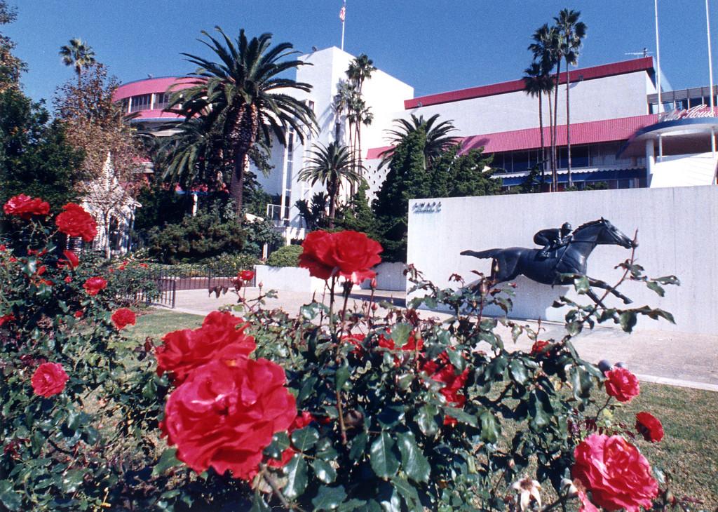 . Hollywood Park on November 18, 1987.   (Los Angeles Daily News file photo)